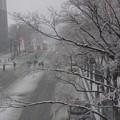 大雪の横浜みなとみらい道路!140214