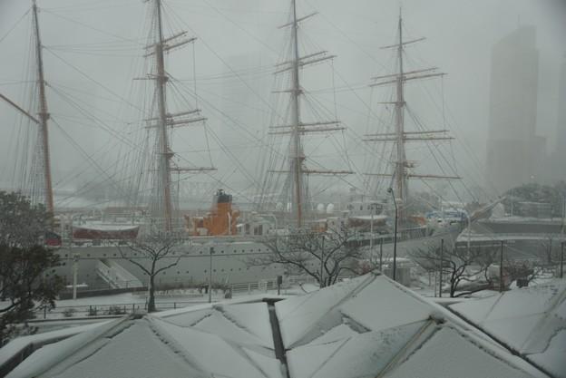 大雪の日本丸!20140214
