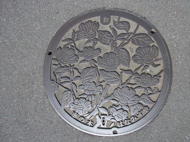 Photos: 埼玉県蓮田市