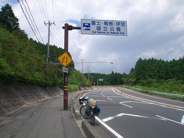 やっとここまで 静岡県函南町