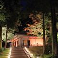 写真: 夜の金色堂入り口
