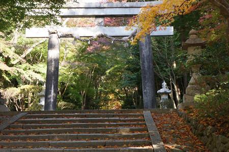 大原野神社 - 02