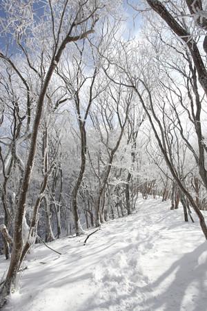 三峰山 - 017