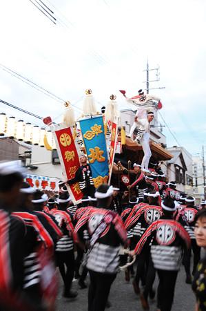 DSC_kishiwada0024