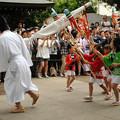 写真: DSC_ojidengaku0016