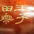 写真: DSC_ojidengaku0004