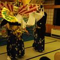 写真: DSC_yokoyamayoi0052