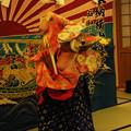 写真: DSC_yokoyamayoi0020