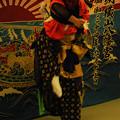 写真: DSC_yokoyamayoi0114