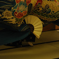写真: DSC_yokoyamayoi0083