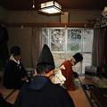 写真: DSC_kamiamakirume0002