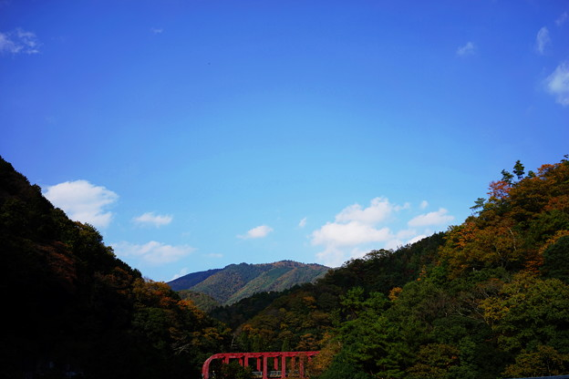 保津峡の秋
