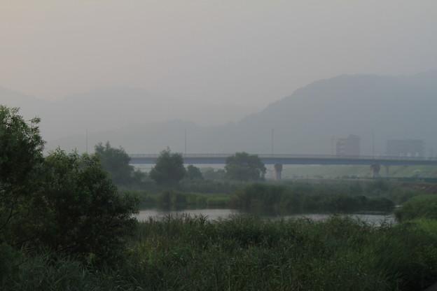 Photos: 百間川