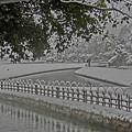御庭の雪景色