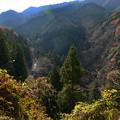Photos: 南海高野線極楽橋付近-01