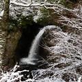 Photos: 高野大滝雪景色