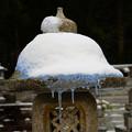 Photos: 雪灯篭