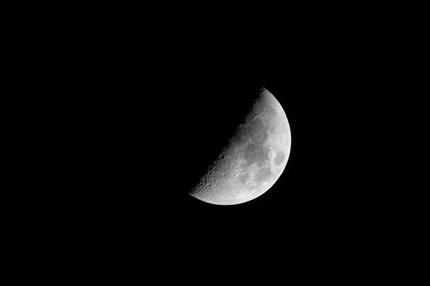 20181115_Moon-x_クロップ