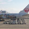 Photos: JALセレブレーションエクスプレス