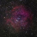 Photos: ばら星雲