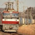 EH500-6牽引コンテナ貨物3050レ 東北本線宝積寺~岡本にて