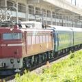 黒磯訓練EF81 81+24系 宇都宮貨物(タ)駅通過