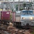 EF66 116コンテナ貨物雀宮駅通過