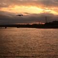 夕焼けの斜里川河口