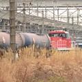 Photos: HD300-14宇都宮貨物(タ)タキ入換え仕業