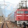 那須連山を背景に黒磯訓練EF81 80+24系 蒲須坂~氏家