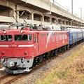 黒磯訓練9501レ EF81 81+24系 宇都宮貨物(タ)通過!