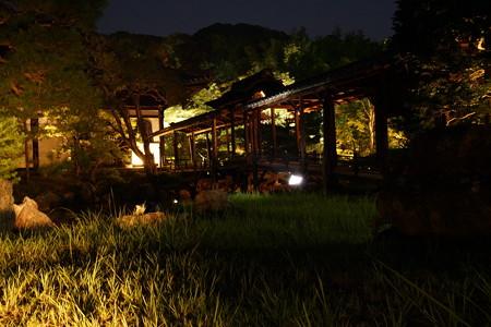 高台寺夜間特別参拝4