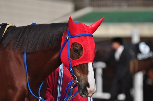 Kinsho Otohime