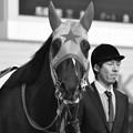 Photos: Meisho Oniguma 01
