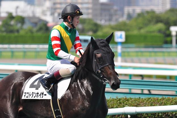Makoto Tannhauser