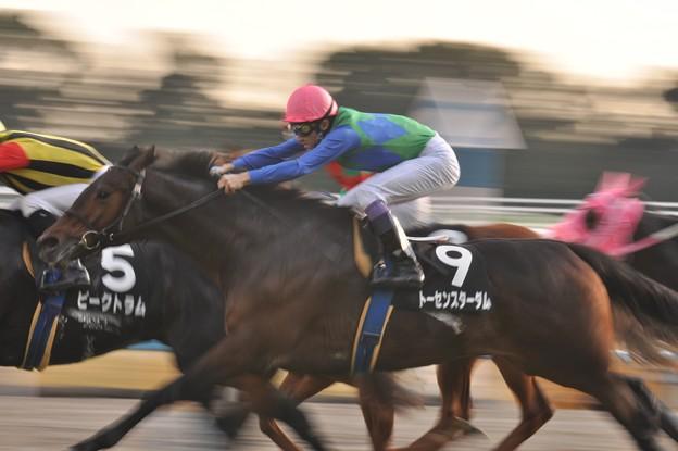 Photos: 伸びやか(Tosen Stardom 09)