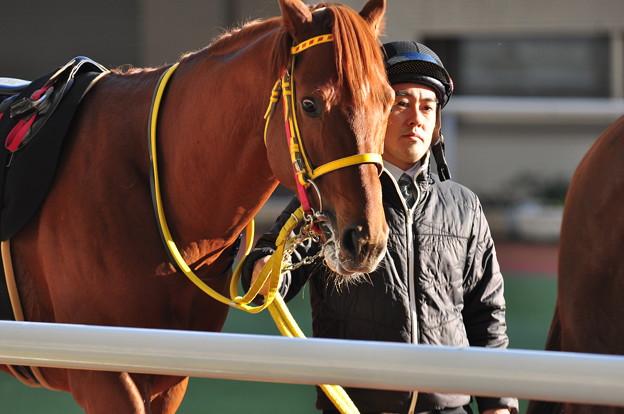 Osumi Ichiban