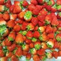 イチゴ~♪