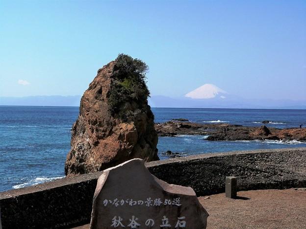 120231_秋谷海岸 (18-1)
