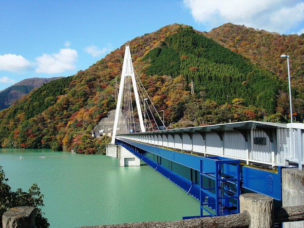 101102_丹沢湖畔にて (23)