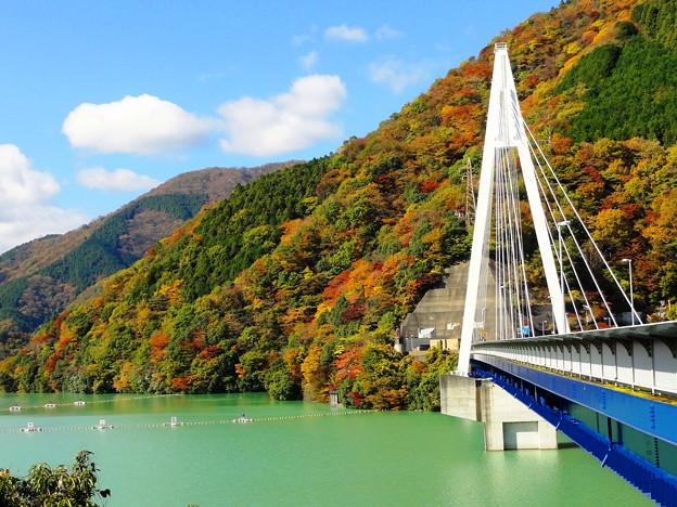 101120_丹沢湖 (89-1)