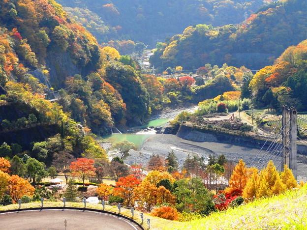 101120_丹沢湖 (59-1)
