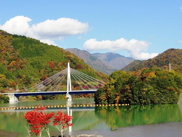 101120_丹沢湖 (54)