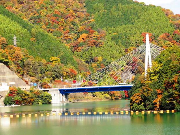 101120_丹沢湖 (51-1)