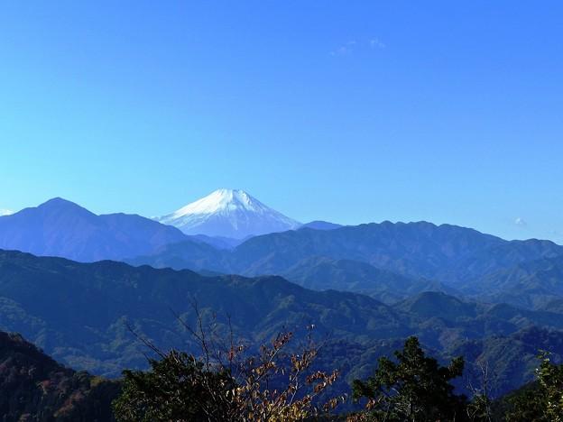 131120_高尾山山頂より (14)