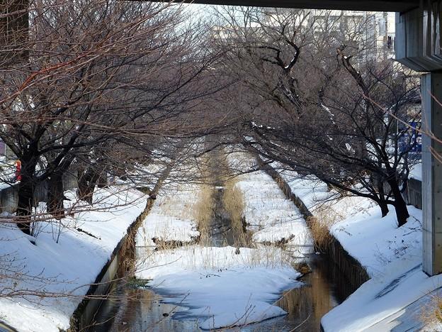 rs-140209_雪の渋川 (3)