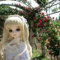 Photos: IMG_6606