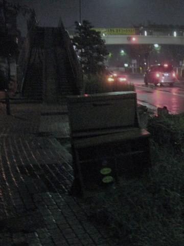 初めて雨に濡れた日