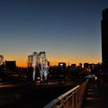 写真: 寒夜(かんや)