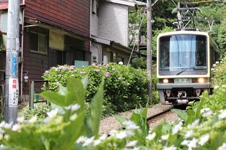 20130602鎌倉1